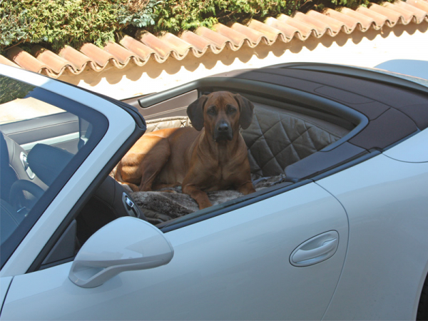 r ckbankausbau f r hunde porsche 911 991 cabrio. Black Bedroom Furniture Sets. Home Design Ideas