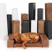 Zauberbett - das Hundebett