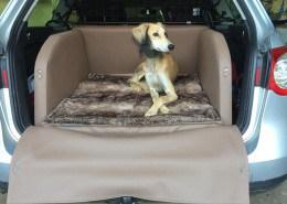 Hundetransport Kofferraum Hund VW Volkswagen Passat