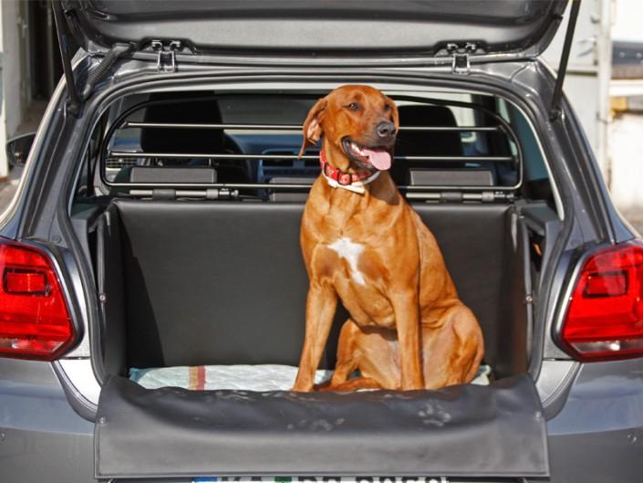 Kofferraum Hund VW Volkswagen Polo