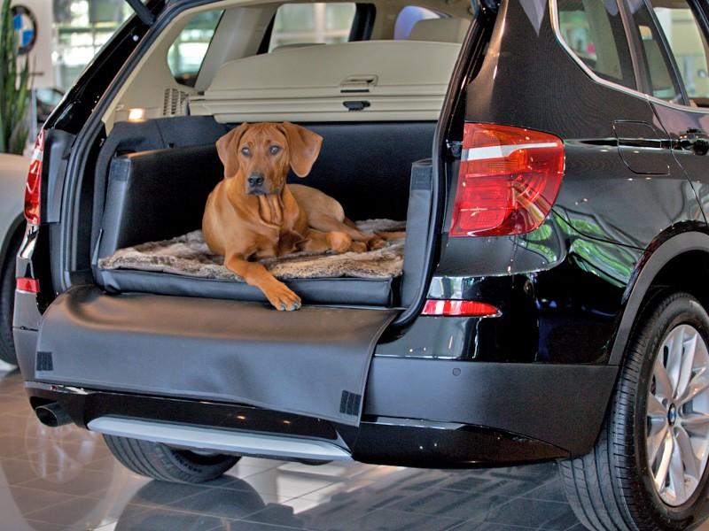 Hundetransport Kofferraum Hund BMW X3