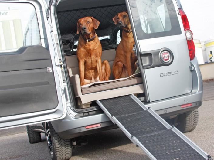 Kofferraum Hund Fiat Doblo