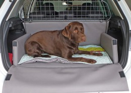 Hundetransport Kofferraum Hund VW Volkswagen Golf
