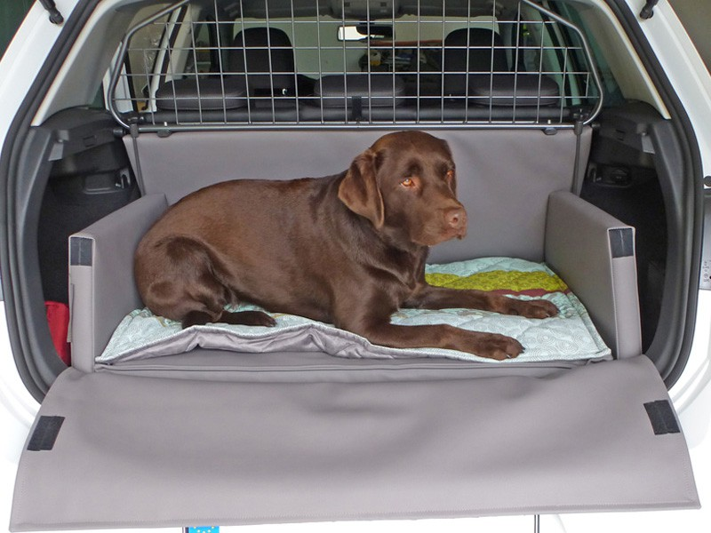 Hundetransport Kofferraum Hund VW Volkswagen Golf