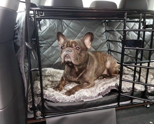Decke Hund Rückbank Auto passend