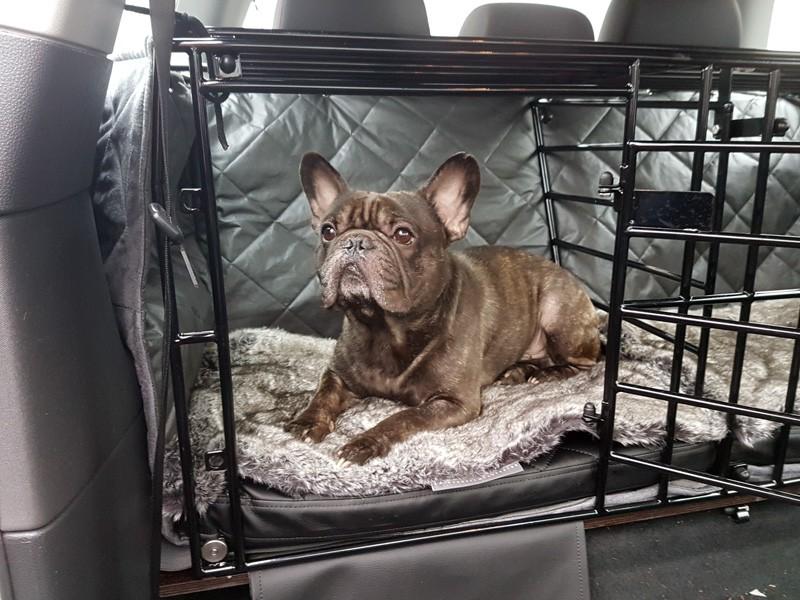 r ckbank decke hund auto kfz zauberbett manufaktur. Black Bedroom Furniture Sets. Home Design Ideas