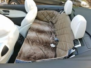 Rückbank Rücksitz Hund BMW M4 4er Cabrio