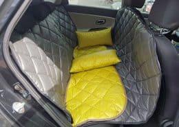Hundetransport Rückbank Rücksitz Hund Kia Ceed