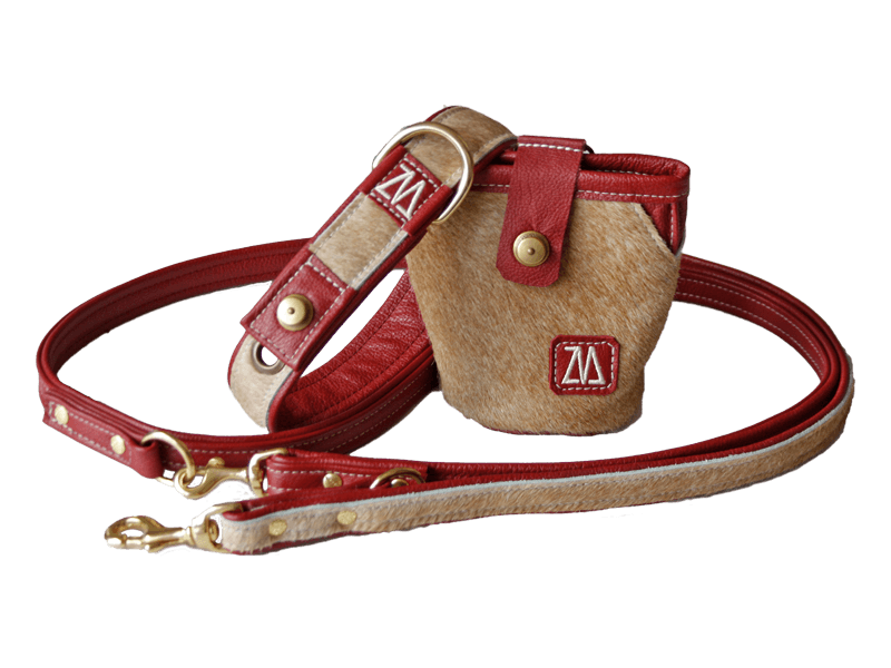 Hundehalsband Leine Futterbeutel Kombination rot