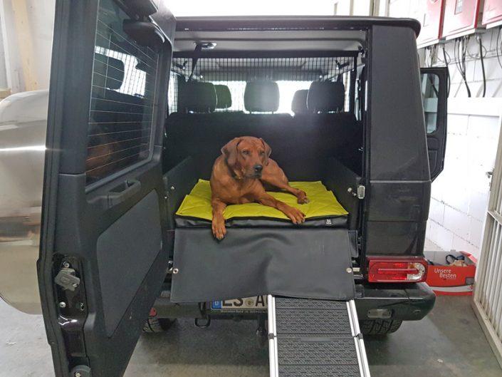 Kofferraumausbau Mercedes Benz G-Klasse für Hunde