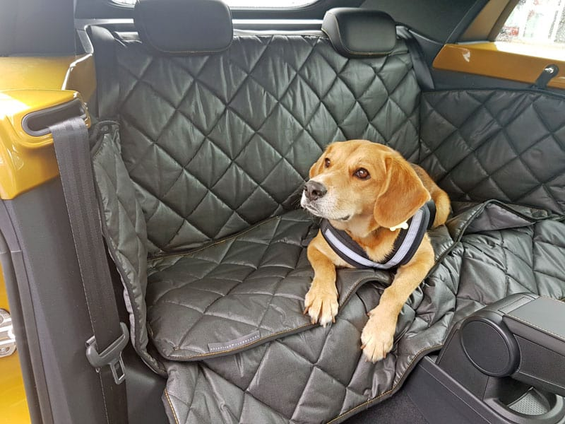 Hundetransport Rückbank Rücksitz VW Beetle Cabrio Hund