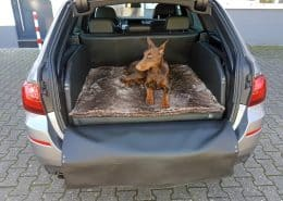 Hundetransport Kofferraum Hund BMW 5er