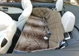 Hundetransport Rückbank Rücksitz Hund BMW M4 4er Cabrio