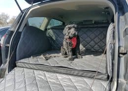 Hundetransport Kofferraum Schondecke Ford S-Max Hund