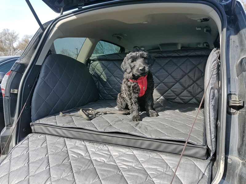 Hundetransport Kofferraum Schondecke Ford S-Max Hund