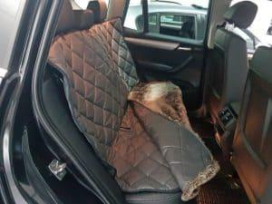 Schondecke Hundetransport Rückbank BMW X3 Hund