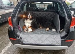 Hundetransport Kofferraum Schondecke BMW X1 Hund