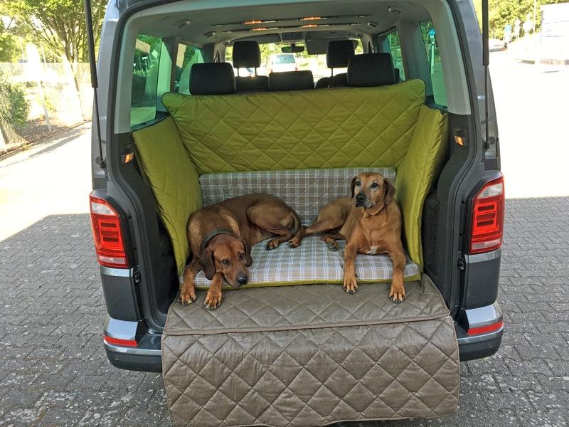 Hundetransport Kofferraum Schondecke VW T6 Hund
