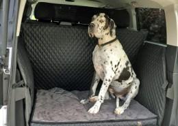Hundetransport Kofferraum Schondecke DELUXE Mercedes-Benz V-Klasse Hund